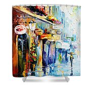Rainy Stroll Shower Curtain