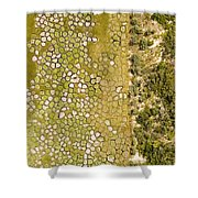 Raised Bed Vegetable Gardens Shower Curtain