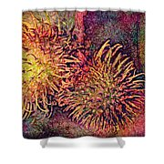Rambutan Shower Curtain