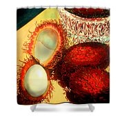 Rambutons Shower Curtain