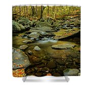 Ramsey Cascades Trailhead Shower Curtain