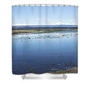 Random Beauty Shower Curtain