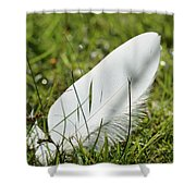 Random Feather Shower Curtain
