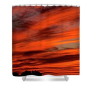 Random Thoughts Shower Curtain