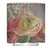 Ranunculus - 6243 Shower Curtain