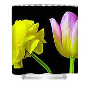 Ranunculus And Tulip Shower Curtain