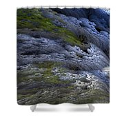 Rapids Shower Curtain
