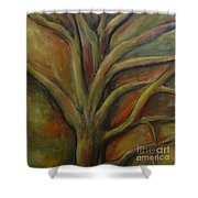 Rapt Shower Curtain