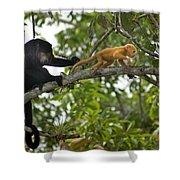 Rare Golden Monkey Shower Curtain