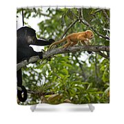 Rare Golden Monkey Shower Curtain