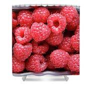 Rasberries Market Bergen Shower Curtain