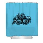Raspberries Image Shower Curtain