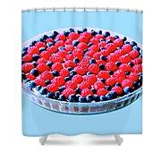 Raspberry And Blueberry Tart Shower Curtain