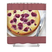 Raspberry Cake Shower Curtain