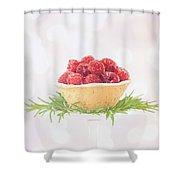 Raspberry Holidays Shower Curtain