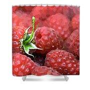 Raspberry Shower Curtain