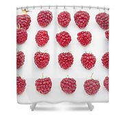 Raspberry Shower Curtain