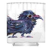 Raven 3 Shower Curtain