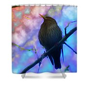 Raven In Spring Shower Curtain