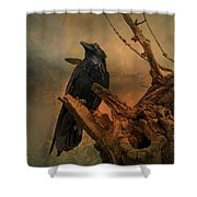 Raven Lover Shower Curtain