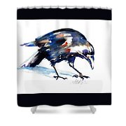 Raven Shadow From Vancouver Shower Curtain