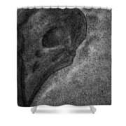 Raven Skull Shower Curtain