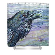 Raven Study 4 Shower Curtain