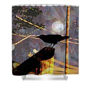 Ravens Night Shower Curtain