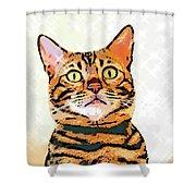 Ravi Series #2 Shower Curtain