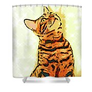 Ravi Series #7 Shower Curtain