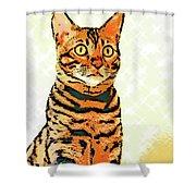 Ravi Series #8 Shower Curtain