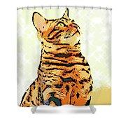 Ravi Series #9 Shower Curtain