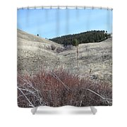 Ravine Access Shower Curtain