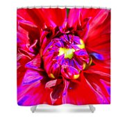 Raving Beauty Shower Curtain