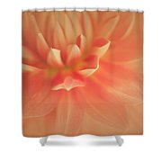 Ravishing Shower Curtain