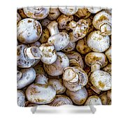 Raw Mushrooms Shower Curtain