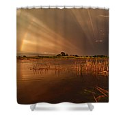 Nature's Light Show Shower Curtain