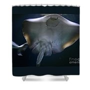 Ray Of Fun Shower Curtain
