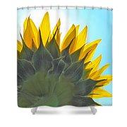 Ray Of Sunflower Shower Curtain