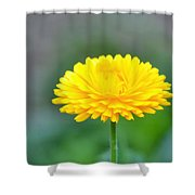 Ray Of Sunshine Shower Curtain