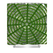 Rays And Circles Abstract 01 Shower Curtain