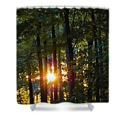 Rays Of Dawn Shower Curtain