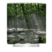 Rays Through The Trees Shower Curtain