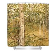 Raystown Lake Shower Curtain