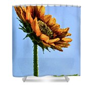 Reach For The Sun Shower Curtain