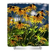 Reaching For The Blue Sky Shower Curtain