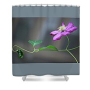 Reaching For The Fence Shower Curtain