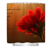 Reaching Inspiration Shower Curtain by Mary Jo Allen