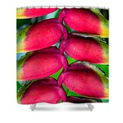 Parrot's Beak Heliconia Shower Curtain