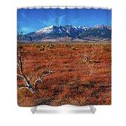 Read Fields Eastern Sierra Shower Curtain